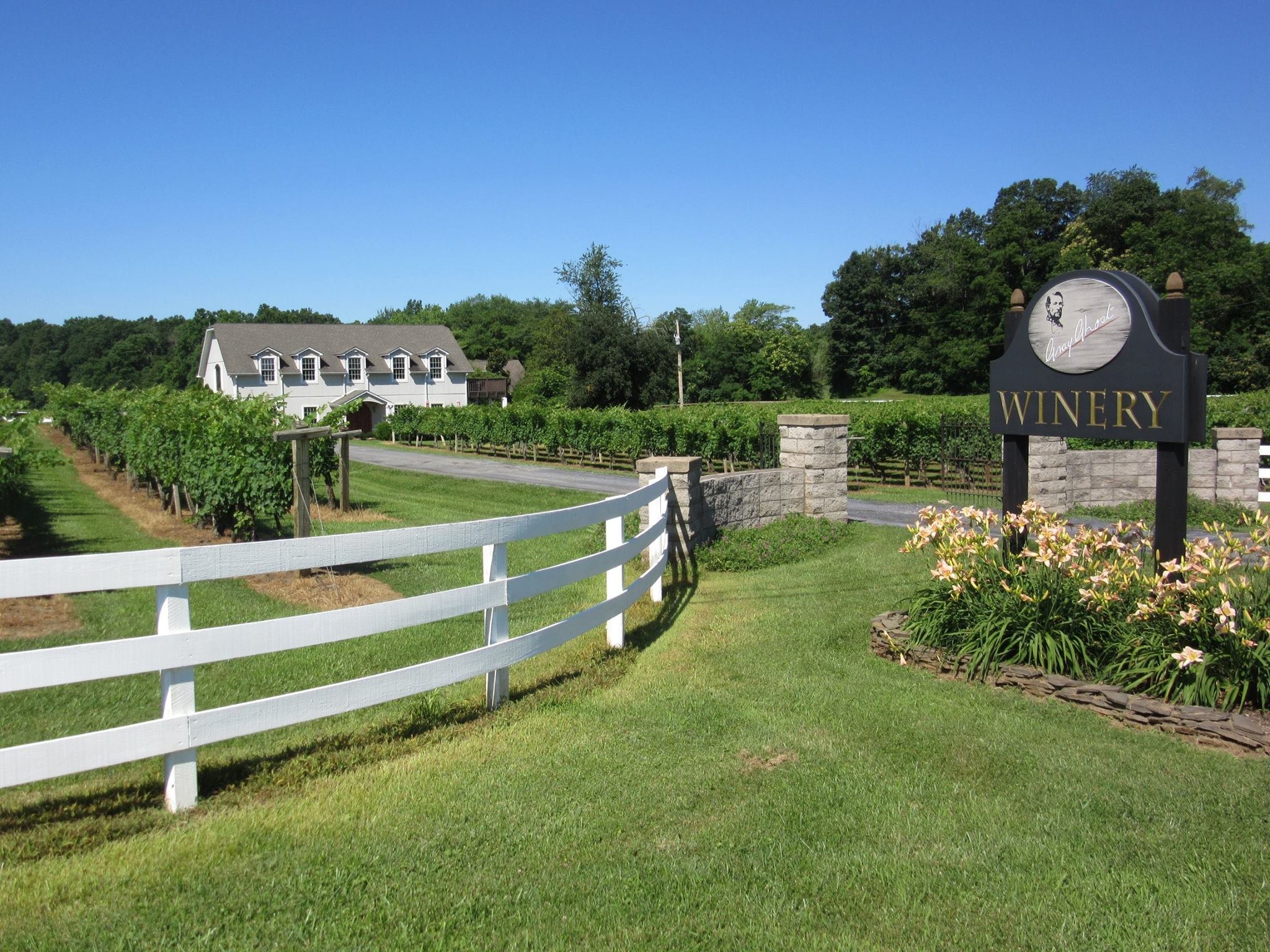 Culpeper-Culpeper-VA-Gray-Ghost-Vineyards-Winery-Live-Music-Tours-Wine-Tasting-Summer
