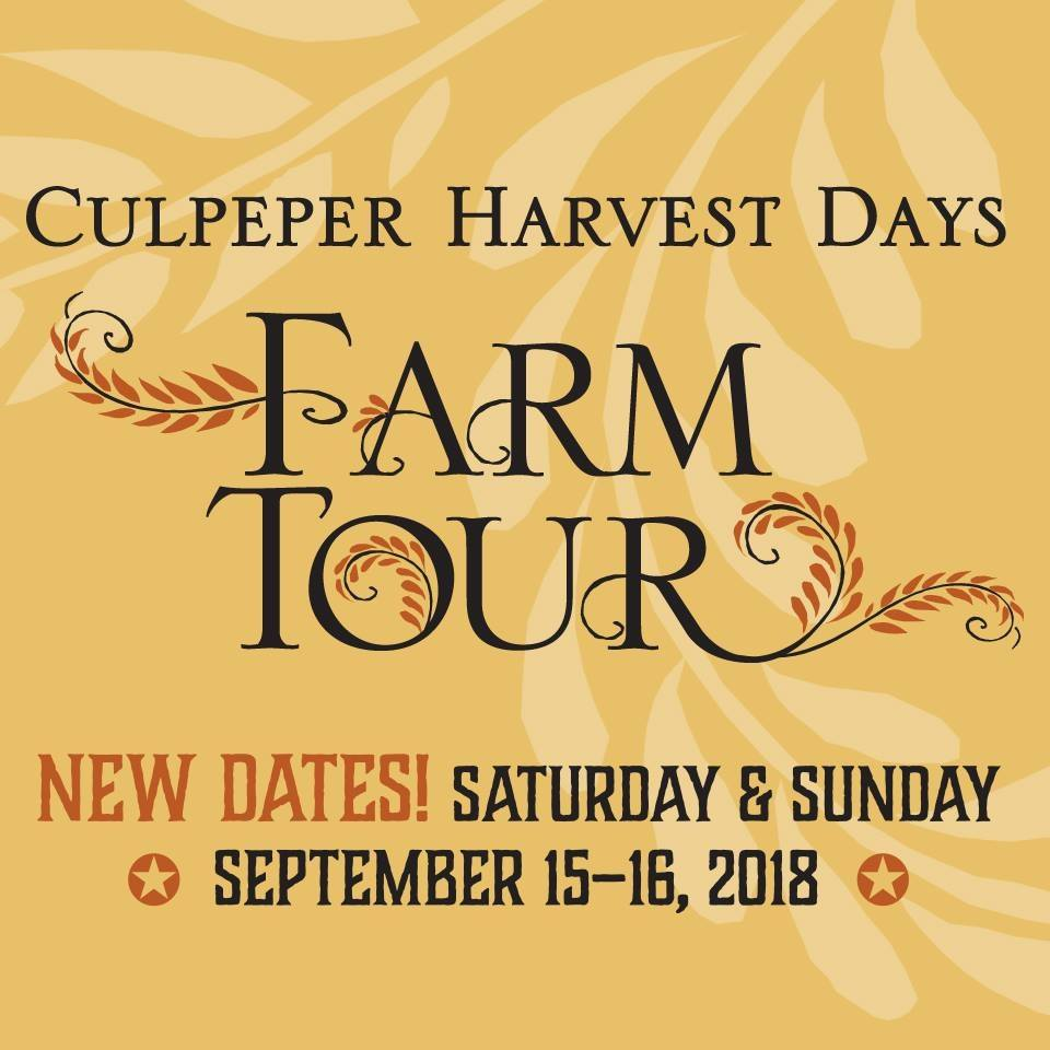 Culpeper-Culpeper-VA-Farm-Tour-Harvest-Fall-Outdoors-Family-Fun-Livestock-Agriculture-Farmers-Animals-Poultry-Heritage-Blue-Ridge-Foothills