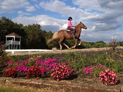 Kellys-Ford-Equestrian-Center
