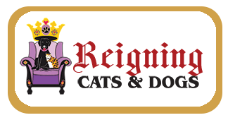 Reigning-Cats-Dogs